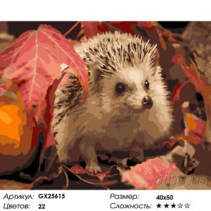Количество цветов и сложность Ежик осенью Раскраска по номерам на холсте GX25615