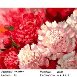 Количество цветов и сложность Летний аромат Раскраска по номерам на холсте GX25609