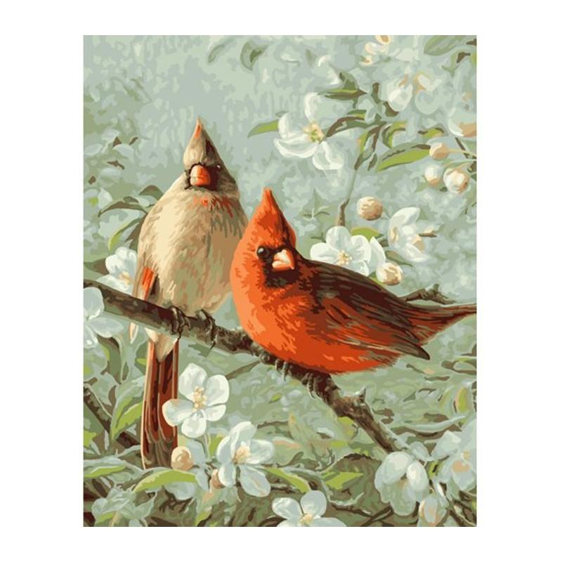 Кардиналы и цветение вишни Раскраска картина по номерам ...