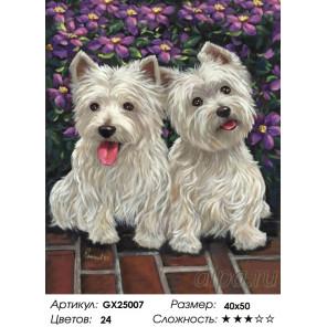 Количество цветов и сложность Парочка собак Раскраска картина по номерам на холсте GX25007