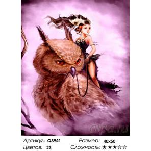 Количество цветов и сложность Девушка верхом на филине Раскраска картина по номерам на холсте Q3941