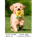 Смышленый щенок Раскраска картина по номерам на холсте
