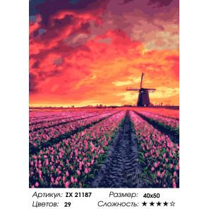 Лавандовое поле на закате Раскраска картина по номерам на холсте ZX 21187