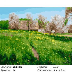 Количество цветов и сложность Сельский пейзаж весной Раскраска картина по номерам на холсте ZX 21210