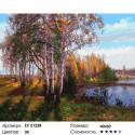 Осень в березовой роще Раскраска картина по номерам на холсте
