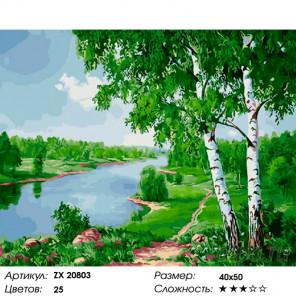 Две березки у реки Раскраска картина по номерам на холсте ZX 20803