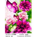 Пионовые бабочки Раскраска картина по номерам на холсте