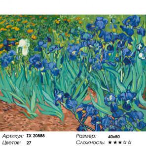 Ирисы (Ван Гог) Раскраска картина по номерам на холсте ZX 20888