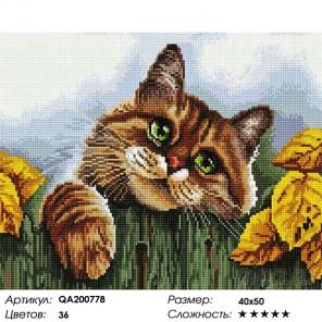 Количество цветов и сложность Кот на заборе Алмазная мозаика на подрамнике Painting Diamond QA200778