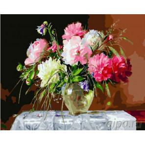 Свежие розовые пионы Раскраска картина по номерам на холсте GX26130