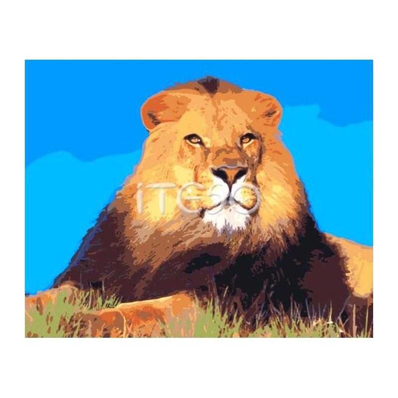 Король лев Раскраска по номерам на холсте Menglei M-A064 ...