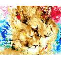 Обьятия львов Раскраска картина по номерам на холсте