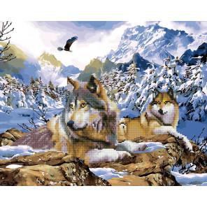 Волки в горах Алмазная картина-раскраска