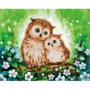 Сова и совенок Алмазная картина-раскраска