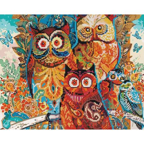 Разноцветные совушки Алмазная картина-раскраска