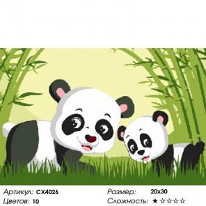 Количество цветов и сложность Панда в бамбуковом лесу Раскраска картина по номерам на холсте CX4026