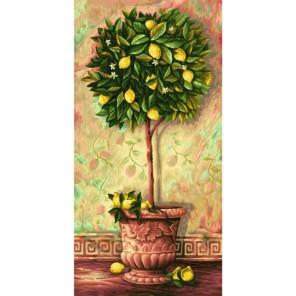 Лимонное дерево Раскраска по номерам акриловыми красками Schipper (Германия)