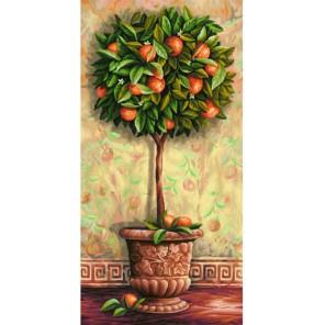 Апельсиновое дерево Раскраска по номерам акриловыми красками Schipper (Германия)