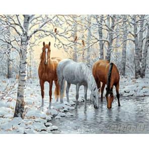 Кони в зимнем лесу Раскраска картина по номерам на холсте