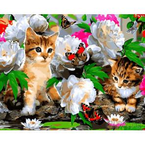 Котики в цветах Раскраска картина по номерам на холсте