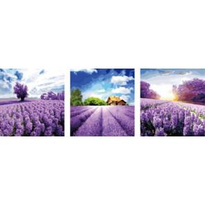 Лавандовый рай Триптих Раскраска по номерам акриловыми красками на холсте Color Kit