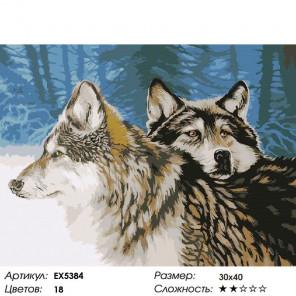 Количество цветов и сложность Волчья верность Раскраска картина по номерам на холсте EX5384