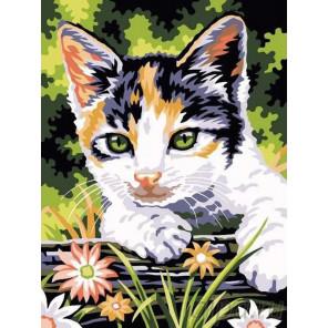 Котенок на прогулке Раскраска картина по номерам на холсте EX5064