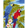 Попугаи Ара Раскраска картина по номерам на холсте EX5075