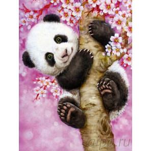 Панда на сакуре Раскраска картина по номерам на холсте EX5191