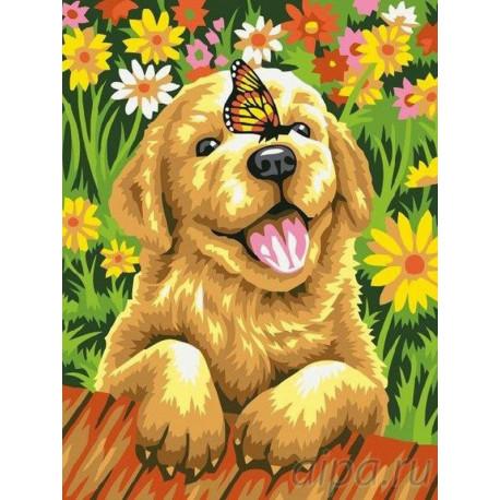 EX5299 Щенок и бабочка Раскраска картина по номерам на ...
