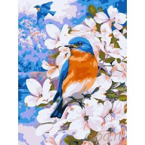 Полет весны Раскраска картина по номерам на холсте EX5943