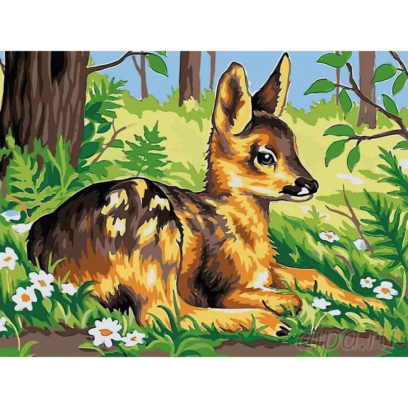 EX5258 Олененок в лесу Раскраска картина по номерам на ...