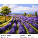 Количество цветов и сложность Поля лаванды Раскраска картина по номерам на холсте GX8998