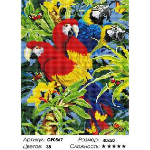 Количество цветов и сложность Попугаи Алмазная вышивка мозаика на подрамнике GF0567