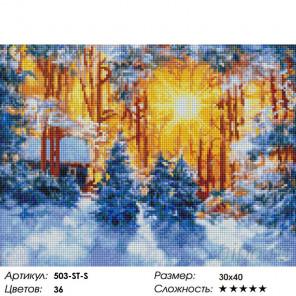 Количество цветов и сложность Февраль Алмазная вышивка мозаика на подрамнике Белоснежка 503-ST-S