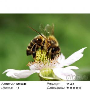Количество цветов и сложность Сладкий нектар Алмазная частичная вышивка (мозаика) Molly KM0046