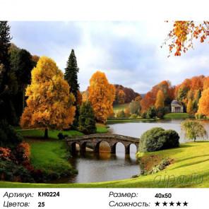 Количество цветов и сложность Англия Раскраска картина по номерам на холсте Molly KH0224