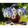 Ромашковое лето Раскраска картина по номерам на холсте Molly KH0234
