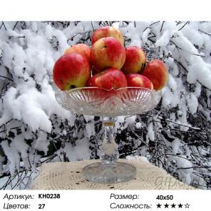 Количество цветов и сложность Яблоки на снегу Раскраска картина по номерам на холсте Molly KH0238