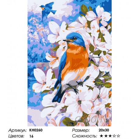 Количество цветов и сложность Весенние птицы Раскраска по номерам на холсте Molly KH0260