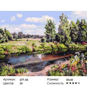 Сложность и количество цветов Прохлада в летний день Раскраска картина по номерам на холсте 277-AS