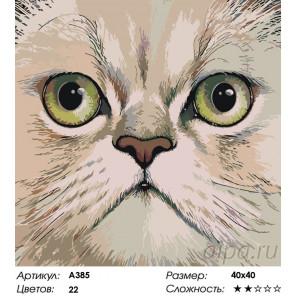 Количество цветов и сложность Персидская мордочка Раскраска по номерам на холсте Живопись по номерам A385