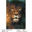 Количество цветов и сложность Лев повелитель Раскраска по номерам на холсте Живопись по номерам ANNA-11080