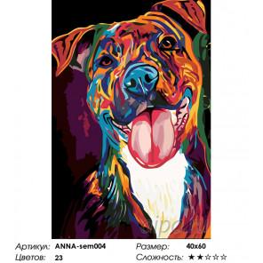 Количество цветов и сложность Радужный боксер Раскраска по номерам на холсте Живопись по номерам ANNA-sem004