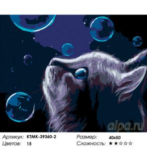 Количество цветов и сложность Волшебные пузыри Раскраска по номерам на холсте Живопись по номерам KTMK-39360-2
