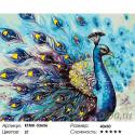 Количество цветов и сложность Синий павлин Раскраска по номерам на холсте Живопись по номерам KTMK-53656