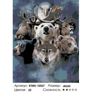 Количество цветов и сложность Братство леса Раскраска по номерам на холсте Живопись по номерам KTMK-10527
