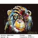 Количество цветов и сложность Портрет радужной шимпанзе Раскраска по номерам на холсте Живопись по номерам KTMK-59990