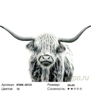 Раскладка Буйвол Раскраска по номерам на холсте Живопись по номерам KTMK-35131