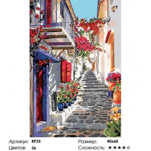 Количество цветов и сложность Узкая улочка Раскраска по номерам на холсте Живопись по номерам RP35